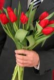 De Tulpen van de Holding van de mens Royalty-vrije Stock Afbeelding