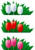 De tulpen van de lente royalty-vrije illustratie
