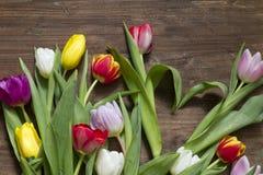De tulpen van de lentepasen met hartvorm Stock Foto