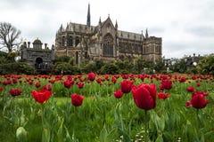 De tulpenfestival van het Arundelkasteel stock afbeeldingen