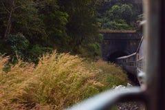 In de Tunnel stock afbeeldingen