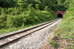 De tunnel van de mens en van de Trein Stock Afbeelding