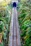 De tunnel van de spoorweg Royalty-vrije Stock Fotografie