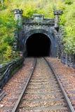 De tunnel van de spoorweg Stock Afbeelding