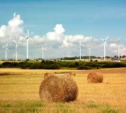 De turbine van de wind en gouden gebied Stock Afbeelding