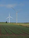 De turbinelandbouwbedrijf van de wind in de moerassen. Royalty-vrije Stock Foto