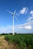 De turbines die van de wind elektriciteit produceren energiebehoud concep stock afbeeldingen
