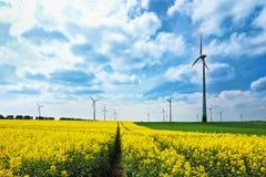 De turbines van de wind onder raapzaadgebied en weiden Royalty-vrije Stock Afbeelding