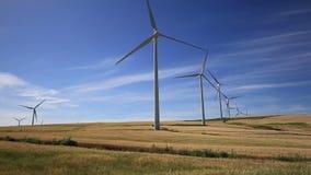 De turbines van de wind op groene weide Facinas, Cadiz, Spanje stock footage
