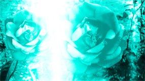 De turkooise kleur stelde en vertroebelde met verlichtingseffect computer geproduceerd bloemenachtergrondafbeelding en behangontw stock foto