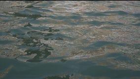 De turkooise oceaan of zeewatergolven sluiten omhoog mening stock video