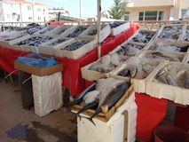 De Turkse tribune van bazaarvissen stock foto