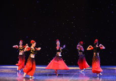 De Turpan druvorna är denKina medborgarefolkdansen Royaltyfri Bild