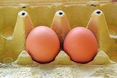 De två äggen Royaltyfri Fotografi