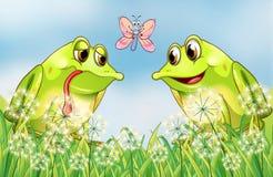 De två grodorna och fjärilen Royaltyfria Bilder