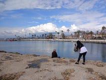 De två paren tycker om havet i en solig dag fotografering för bildbyråer