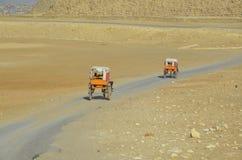 De två triumfvagnarna med turister som reser till pyramiderna av Giza Arkivfoto