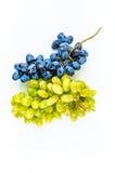 De twee druivenverscheidenheden Royalty-vrije Stock Afbeelding