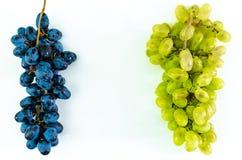 De twee druivenverscheidenheden Royalty-vrije Stock Afbeeldingen