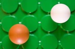 De twee eieren Royalty-vrije Stock Foto's