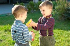 De tweelingbroers spelen op de weide Stock Afbeeldingen