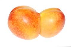 De tweelingen van de perzik Stock Foto