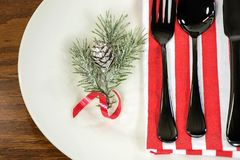 De twijg van de Kerstmispijnboom op dinerplaat Royalty-vrije Stock Fotografie