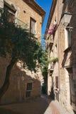 De typische steeg van Acciaroli stock foto's
