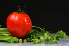 De ui van de tomaat, van de peterselie en van de lente Royalty-vrije Stock Foto