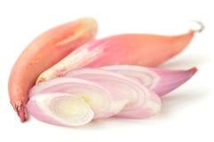 De uien van de sjalot op een witte achtergrond Stock Foto's