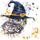 De uil en de heksenhoed van Halloween de achtergrond van de waterverfillustratie Stock Foto's