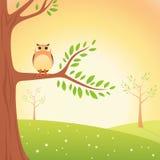 De Uil van het beeldverhaal op de boom Royalty-vrije Stock Afbeeldingen