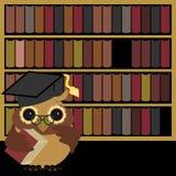 De uil van Nice met boeken Stock Foto