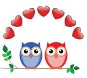 De uilen van de valentijnskaart Royalty-vrije Stock Foto's