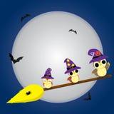 De Uilen van Halloween Stock Afbeelding