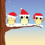 De Uilen van Kerstmis Stock Afbeelding