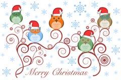 De Uilen van Kerstmis met de Hoed van de Kerstman op Boom Royalty-vrije Stock Foto