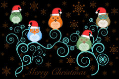 De Uilen van Kerstmis met de Hoed van de Kerstman op Boom op Zwarte Royalty-vrije Stock Afbeelding