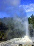 De uitbarsting van de geiser, Nieuw Zeeland Stock Afbeeldingen