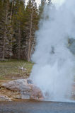 De uitbarsting van de rivieroevergeiser in het Nationale Park van Yellowstone, de V.S. Royalty-vrije Stock Foto's