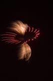 De Uitbarsting van het vuurwerk royalty-vrije stock foto's