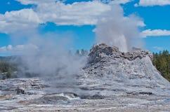 De uitbarsting van de kasteelgeiser in het Nationale Park van Yellowstone, de V.S. stock afbeelding
