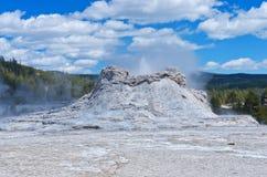De uitbarsting van de kasteelgeiser in het Nationale Park van Yellowstone, de V.S. stock foto's