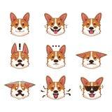 De Uitdrukking van Emoji Emoticon van de Corgihond Stock Afbeeldingen