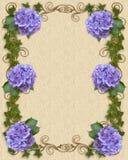 De uitnodigingsHydrangea hortensia en Klimop van het huwelijk   Stock Afbeeldingen