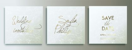 De uitnodigingskaarten van het luxehuwelijk met zilveren Decoratieve Bloemen en Kruiden Reeks van kaart met zilveren bloem, blade royalty-vrije illustratie