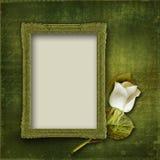 De uitstekende achtergrond met frame en nam toe Stock Afbeeldingen