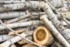 De uitstekende achtergrond van de houtsnedenaard Royalty-vrije Stock Foto's