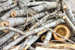 De uitstekende achtergrond van de houtsnedenaard Royalty-vrije Stock Afbeeldingen