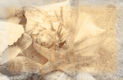 De uitstekende Achtergrond van de Prentbriefkaar Royalty-vrije Stock Afbeeldingen